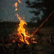 profitable firewood distribution business - 2
