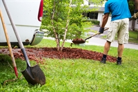 landscaping company essex county - 1