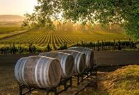 profitable beautiful winery new - 1