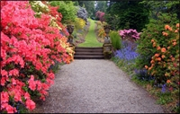 residential gardening high-end landscaping - 1