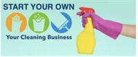 fantastic online domestic cleaning - 1