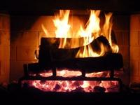 profitable firewood distribution business - 1