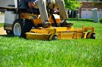 landscaping business sussex county - 1