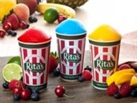 rita's water ice netting - 1