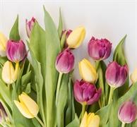 profitable award winning floral - 2