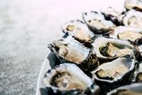 specialty seafood shellfish aquaculture - 1