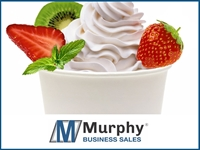 successful frozen yogurt - 1
