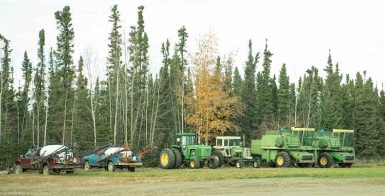 grain seed hay farm - 10