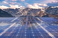 fast growing solar panel - 1