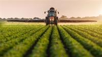 lucrative agricultural enterprise high - 1