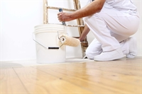 established painting business caddo - 1