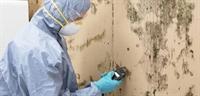 environmental services restoration firm - 3