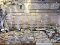 bridal business suffolk county - 1