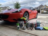 auto detailing business florida - 1
