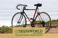 established thriving bike sales - 1