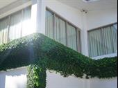 thriving window blinds shutters