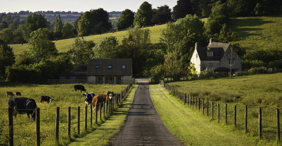 Are you ready to buy a farm? 5 questions to ask yourself...